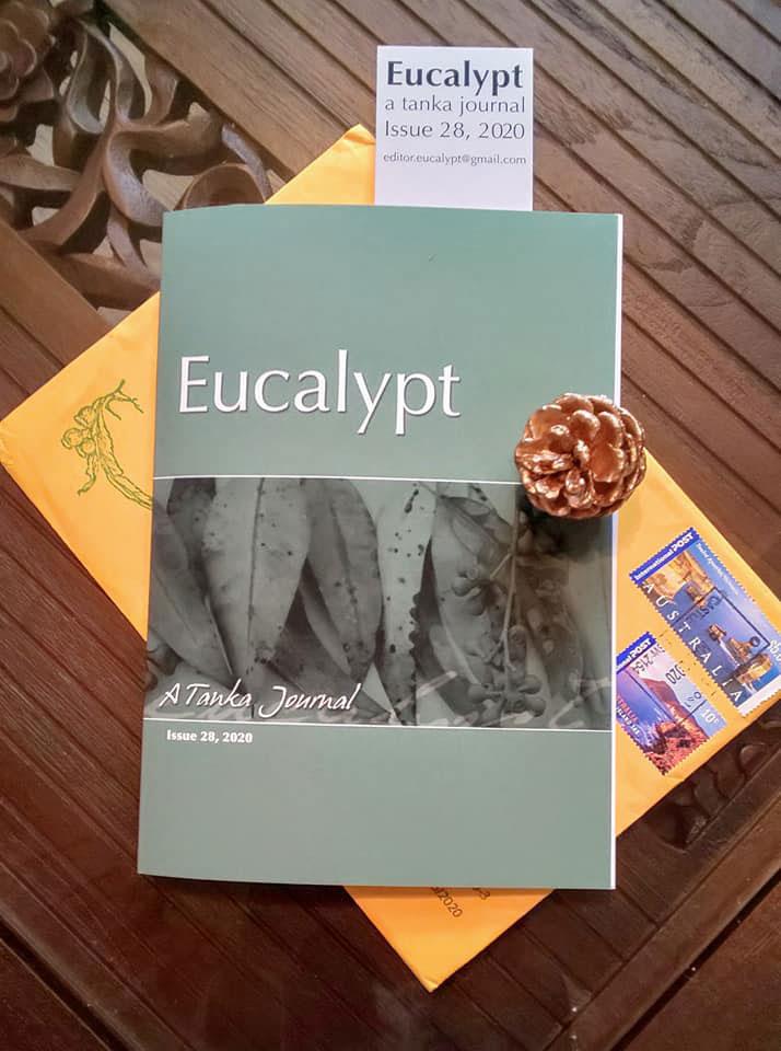 20200522_Eucalypt_01.jpg
